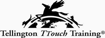 ttouch logo mensi